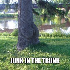 whatcha gonna do with all that junk all that junk inside your trunk... ok, this was so dumb it became funny.