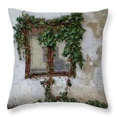 Window with ivy, motive printed on pillow. Luxury Homes Interior, Luxury Decor, Modern Interior, Pillow Sale, Interior Design Studio, Minimalist Decor, Shabby Chic Decor, Home Decor Accessories, Home Remodeling