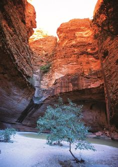 Cathedral Gorge, in Purnululu National Park