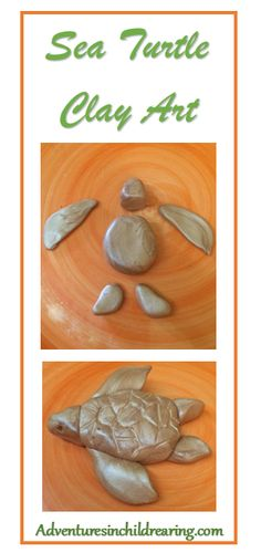 Sea Turtle Clay Art - project for Skulpey clay, air dry or homemade play dough. Sea Turtle Unit Study launching soon.