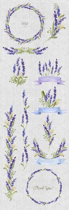 Watercolor set with Lavender Flowers by NataliVA on @creativemarket