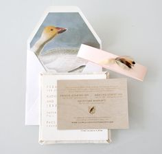 Sideshow Press: Recycled Liners and Handwritten Type quail feathers - collected Minimalist Wedding Invitations, Wedding Stationary, Handwritten Type, Envelope Liners, Business Card Design, Invitation Design, Wedding Details, Stationery, Place Card Holders