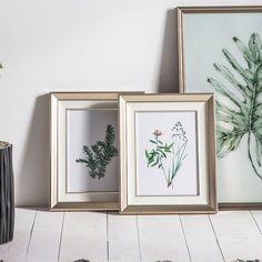 Botanical Spring II Framed Art Set of 2 Painting Frames, Painting Prints, Art Prints, Framed Art, Framed Prints, Wall Art, Box Art, Botanical Prints, The Ordinary
