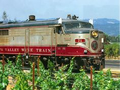 Sit back, relax and enjoy the fine gourmet food and incredible wine aboard the Napa Valley wine train.