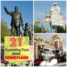 21 Fascinating Things No One Ever Told You About Disneyland Disney Day, Disney Tips, Disney Family, Disney Love, Disney Magic, Disney Pixar, Disney Stuff, Disney Nerd, Disneyland Tips