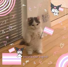 Health And Fitness Expo, Cute Cat Memes, Gato Anime, Cat Icon, Lgbt Love, I Love Girls, Lesbian, Pride, Cats
