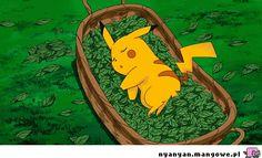 Sleeping baby Pikachu!