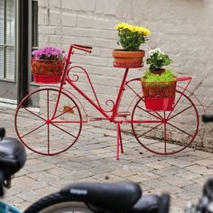 Bicycle Plant Stand Red Metal Outdoor Indoor Porch Patio Flowers Yard Decor New Wallpaper B, Outdoor Plants, Outdoor Decor, Indoor Outdoor, Decoration Plante, Diy Garden Furniture, Flower Pots, Flowers, Flower Cart