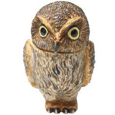 Owl Pot Bellys® Boxes   Elf Owl At Signals
