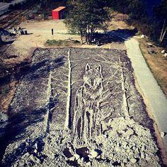 Está quase terminado o trabalho de Vik Muniz para a Bienal de Vancouver. O artista brasileiro ficou mais que à vontade com o tema da mostra, que pretende levar arte para as paisagens da cidade e arredores, por dois anos inteiros, até a primavera de 2016. O trabalho de Vik é um lobo gigante na floresta, criado com pedras, deslocadas no braço, com a ajuda da comunidade de Squamish, cidade a uma hora de Vancouver, onde está o retângulo gigante de 20 X 30 metros que acomoda a obra.
