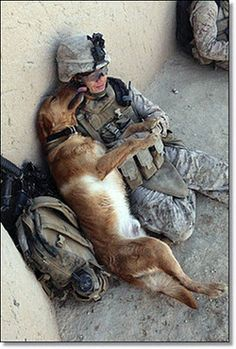 Love from a furry friend. God bless our troops!