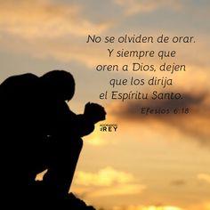 No se olviden de orar. Y siempre que oren a Dios, dejen que los dirija el Espíritu Santo. Manténganse en estado de alerta, y no se den por vencidos. En sus oraciones, pidan siempre por todos los que forman parte del pueblo de Dios. -Efesios 6:18