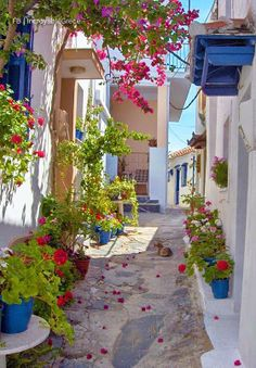 Alley in Skopelos