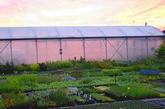 Pěstební plocha se skleníkem