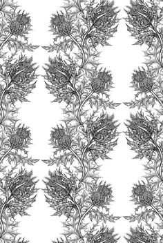 Timorous Beasties Wallcoverings - Thistle wallpaper