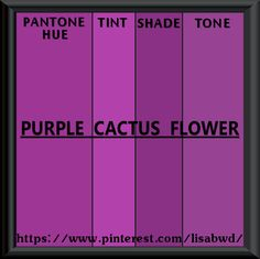 PANTONE SEASONAL COLOR SWATCH  PURPLE CACTUS FLOWER