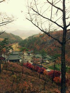Raining Autumn in S.Korea
