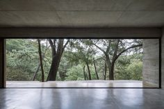 Full-height windows set deep into the concrete forms of the home with thin metal balustrades frame large, uninterrupted views out to the forest. Concrete Forms, Concrete Houses, Concrete Design, Concrete Wall, Beautiful Architecture, Contemporary Architecture, Interior Architecture, Arch Interior, Residential Architecture
