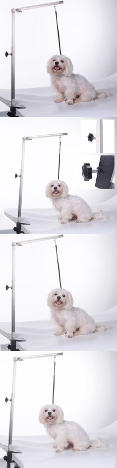 Grooming Tables 146241: Adjustable 115Cm Foldable Pet Dog Grooming Table Arm Clamp Bracket Harness Leash -> BUY IT NOW ONLY: $43.05 on eBay!