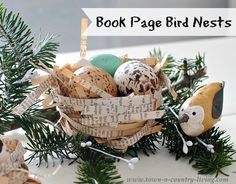Book Page Bird Nests by Town and Country Living