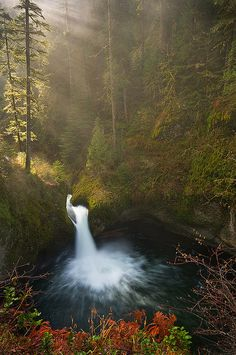 Foggy Punchbowl Falls, Oregon