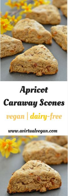 With their crunchy exterior & dense, slightly crumbly but soft & tender interior, these Apricot Caraway scones are utterly delicious!