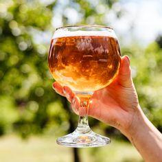 In Zuid-Limburg weten ze als geen ander wat bourgondisch genieten is.⭐️ Dit is natuurlijk ook zo op het resort! Speciaal voor de échte Bourgondiër hebben we een bierpakket samengesteld met 6 unieke speciaal bieren. Wat is jouw favoriete speciaal biertje? 🍺 Beer Lovers, Craft Beer, Good Times, Cheers, Crisp, Drinking, Alcoholic Drinks, Smooth, Day