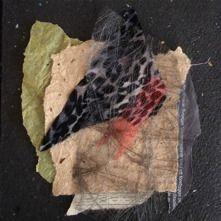 Collage textil/papper  Birgitta Boholm