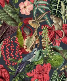 Jungle Fever Wallpaper Amazon JF2201 By GrandecoLife