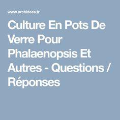 Culture En Pots De Verre Pour Phalaenopsis Et Autres - Questions / Réponses Questions, Pots, Culture, Drinkware, Plants, Cookware, Jars, Flower Planters