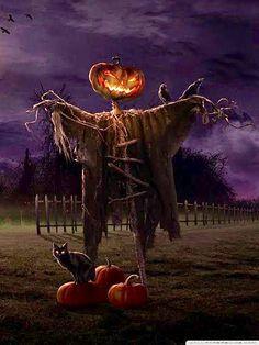 To all my fellow Pinners, Happy Halloween! Halloween Horror, Holidays Halloween, Spooky Halloween, Vintage Halloween, Halloween Pumpkins, Happy Halloween, Halloween Decorations, Spooky Pumpkin, Pumpkin Head