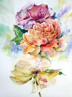 verblühte Rosen / Aquarell 30x40cm