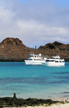 Cruising through the Galapagos Islands
