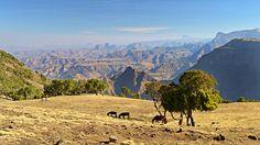 Simien jsou typickým afroalpským pohořím, s náhorními planinami, kolmými skalními stěnami a zajímavými skalními útvary.