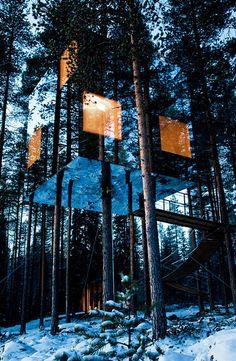 Tree house hotel | Lapland | Sweden