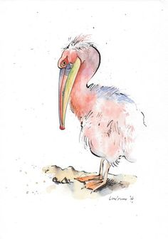 ARTFINDER: Pink backed Pelican by Luci Power - Original Pen and Ink drawing of a pink Pelican drawn in March using watercolour paper, Indian ink and a dip pen and watercolour! My favourite dip pen. Watercolor Projects, Pen And Watercolor, Watercolor Paintings, Bird Paintings, Watercolor Ideas, Watercolor Animals, Pelican Drawing, Pelican Art, Bird Drawings
