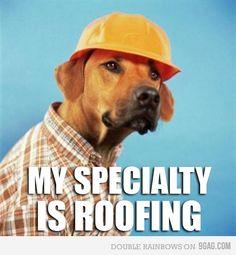 Best 37 Best Roof Images Roof Leak Repair Roof Paint 640 x 480