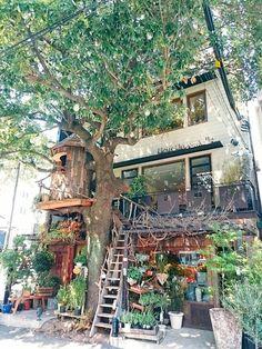 """「レ・グラン・ザルブル」は""""大きな木""""という意味を持つツリーハウスカフェ。お花屋さんとカフェが一体となっていて緑と花に溢れた素敵な空間です。石原さとみさん&松下奈緒さん主演の「ディアシスター」の中にも登場しました。"""