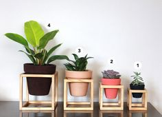suporte de madeira + vaso de cerâmica nº4 - Pomelo Atelier