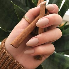 If you don't like fancy nails, classy nude nails are a good choice because they are suitable for girls of all styles. And nude nails have been popular in recent years. If you also like Classy Nude Nail Art Designs, look at today's post, we have col Matte Nails, Stiletto Nails, Pink Nails, Gel Nails, Acrylic Nails Almond Matte, Almond Nail Art, Gradient Nails, Black Nails, Matte Black