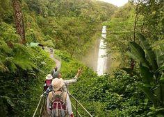 オアフ島のアドベンチャー  自然の宝庫オアフ島には、子供から大人まで年齢を問わず楽しめるアクティビティが豊富に揃っています。海に山に、ハワイの大自然が暖かくあなたを迎えてくれます。  MSH Hawaii Tours -  2231 Kalakaua Avenue, Honolulu, Hawaii, 96815, Stati Uniti d'America   www.mshawaiitours.com Tel:  1 808 372 8666 email: info@mshawaiitours.com