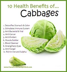 Health Benefits of Cabbage!, Health Benefits of Cabbage! Health Benefits of Cabbage! Health Benefits of Cabbage! Good Health Tips, Health And Beauty Tips, Healthy Tips, Healthy Choices, Cabbage Health Benefits, Fruit Benefits, Cabbage Nutrition, Health Facts, Health And Nutrition