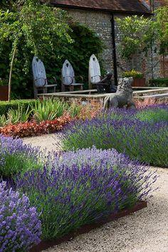Lawenda w ogrodzie - aranżacja, lawendowy ogród