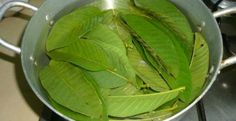 Diabetes, Spinach, Plant Leaves, Vegetables, Plants, Food, How To Prepare Tea, How To Make Tea, Tea Recipes