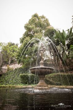 The duBoirs » Gallery Lavender Blossoms, Romantic Getaway, Perfect Place, Fountain, Backdrops, Wedding Venues, Waterfall, Gallery, Places