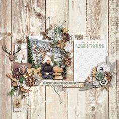 Winter Woodland - Sweet Shoppe Gallery