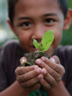 $20 subsidizes the medical care of one patient - Saving Rainforests with a Stethoscope