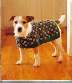 Re: modelo de ropa para perros