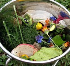 Kitchen and garden scraps provide green material for your compost.