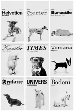 If Fonts Were Dogs #LOL #dog #funny